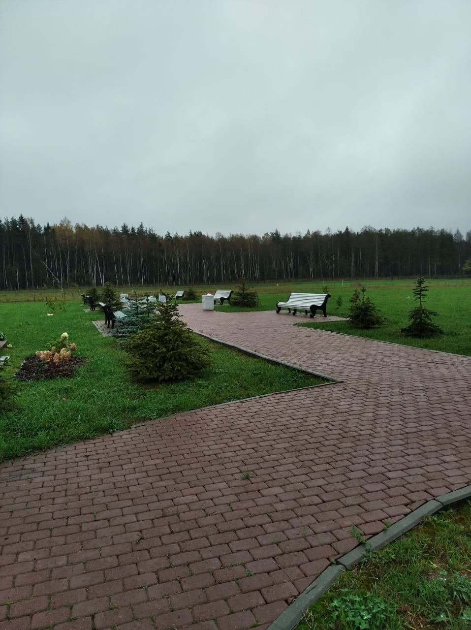 белоостровское кладбище